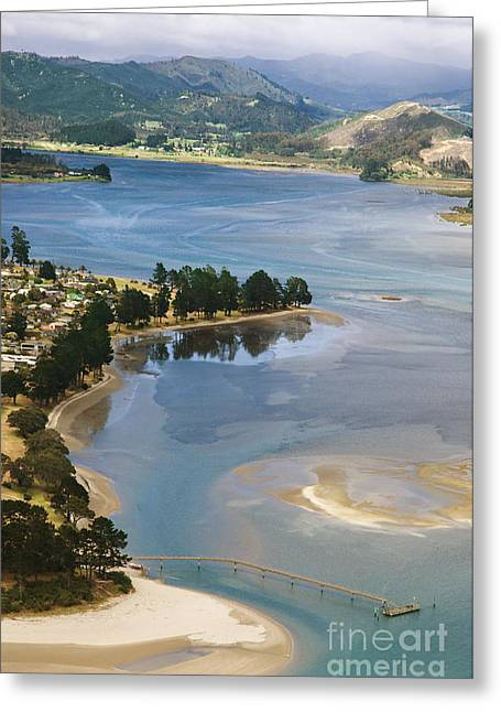 Tairua Harbour Greeting Card by Himani - Printscapes