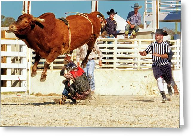 Take Cover - Bull Rider - Rodeo Greeting Card by Mitch Spence