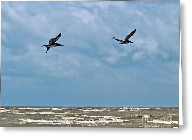 Greeting Card featuring the photograph Take Flight  by Ken Frischkorn