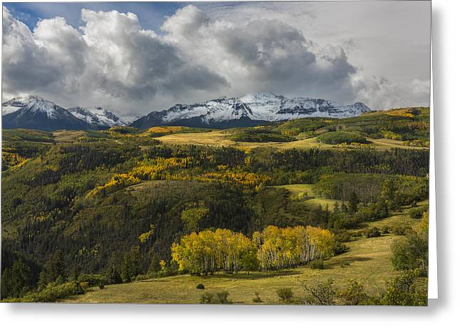 Take It In Greeting Card by Jon Glaser