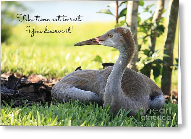Take Time To Rest Greeting Card