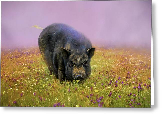 Take Time To Smell The Flowers Pot Bellied Pig Art Greeting Card by Jai Johnson