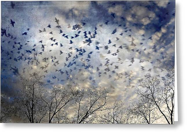 Greeting Card featuring the photograph Taken Flight by Jan Amiss Photography