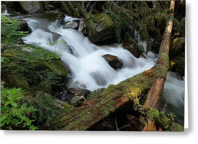 Talapus Creek Greeting Card by Jeff Swan