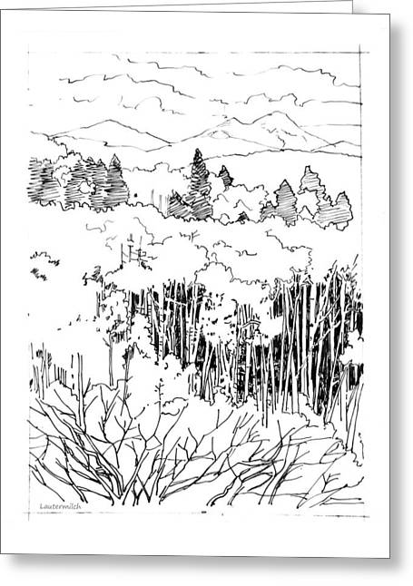 Tall Aspens Rocky Mountains Greeting Card by John Lautermilch