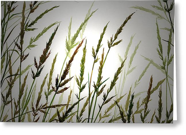 Greeting Card featuring the digital art Tall Grass And Sunlight by James Williamson