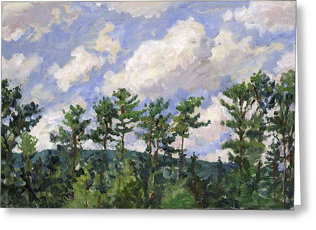 Tall Pines At Tanglewood Greeting Card by Thor Wickstrom