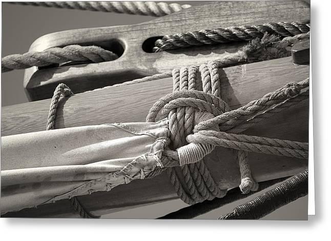 Tall Ship Sail Cloth Sepia Greeting Card by Dapixara Art