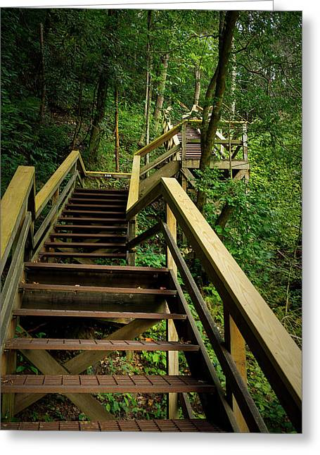 Tallulah Gorge Stairs Greeting Card