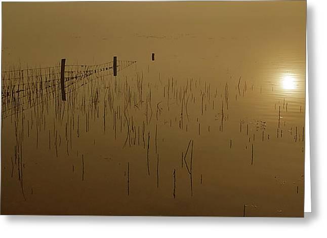 Talybont Reservoir Dawn Greeting Card by Nigel Forster