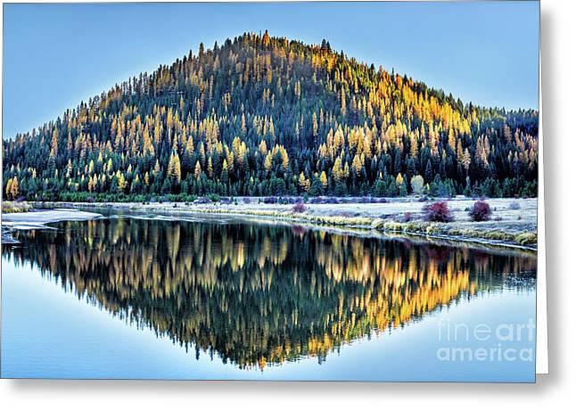 Tamarack Glow Idaho Landscape Art By Kaylyn Franks Greeting Card
