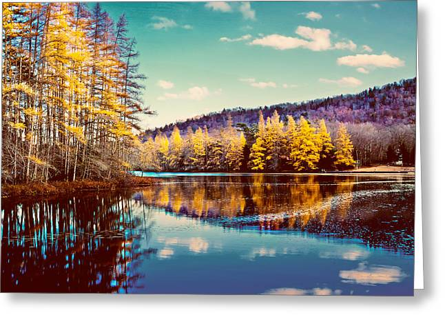 Tamaracks At Woodcraft Camp Greeting Card by David Patterson