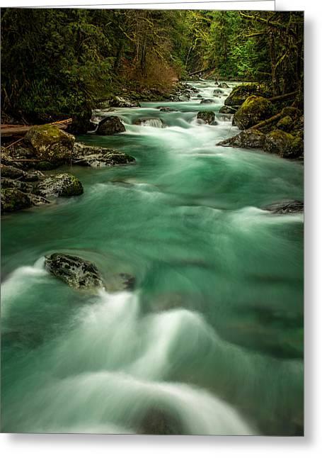 Tamihi Creek 2 Greeting Card