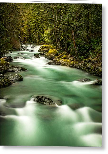 Tamihi Creek Greeting Card