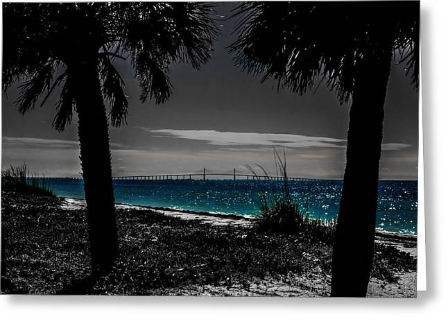 Tampa Bay Blue Greeting Card
