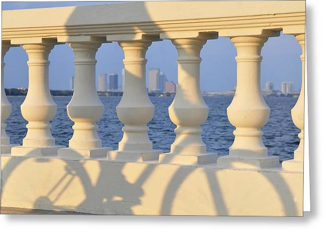 Creative Photography Greeting Cards - Tampa Bay Cycling Greeting Card by David Lee Thompson