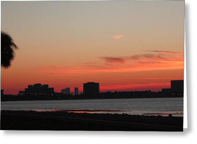 Tampa Bay Sunrise Greeting Card by Janet Pugh