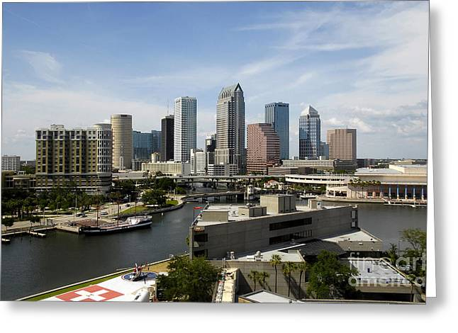 Tampa Florida Landscape Greeting Card by David Lee Thompson