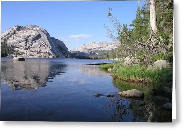 Tanaya Lake Greeting Card by Mark Stevenson