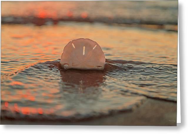Tangerine  Greeting Card by Betsy Knapp