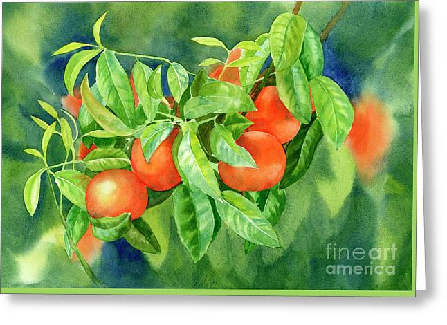 Tangerines With Background 2 Greeting Card