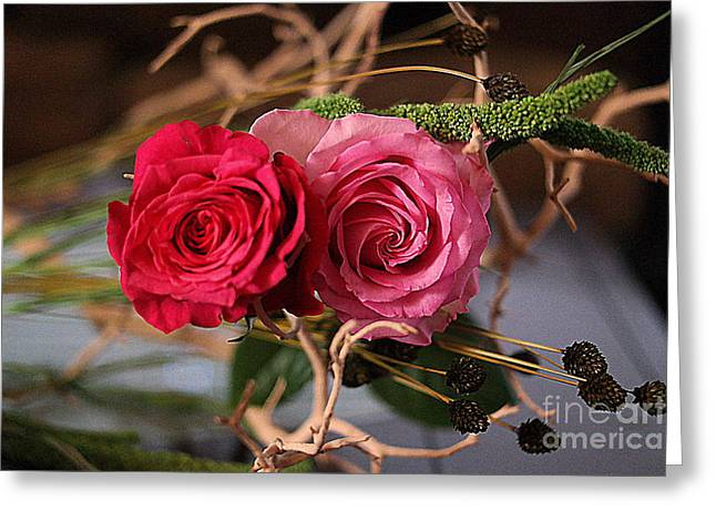 Greeting Card featuring the photograph Tangled On Driftwood by Diana Mary Sharpton