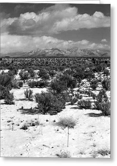 Taos Snowfall Greeting Card by Susan Chandler