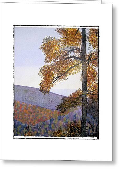 Tapestree Greeting Card by Robert Boyette