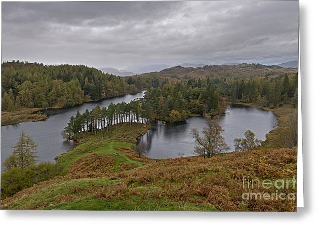 Tarn Hows Drenched Greeting Card by Richard Thomas