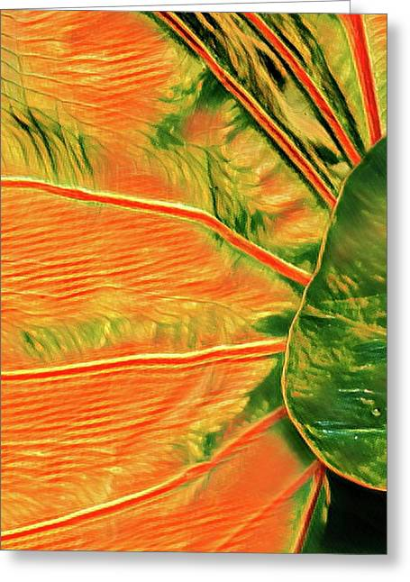 Taro Leaf In Orange - The Other Side Greeting Card