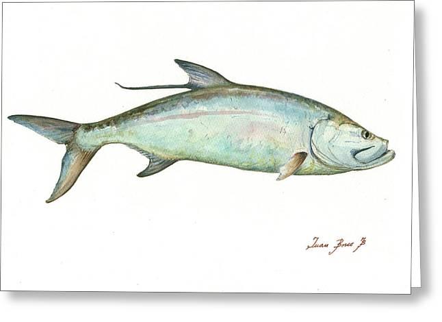 Tarpon Fishf Greeting Card