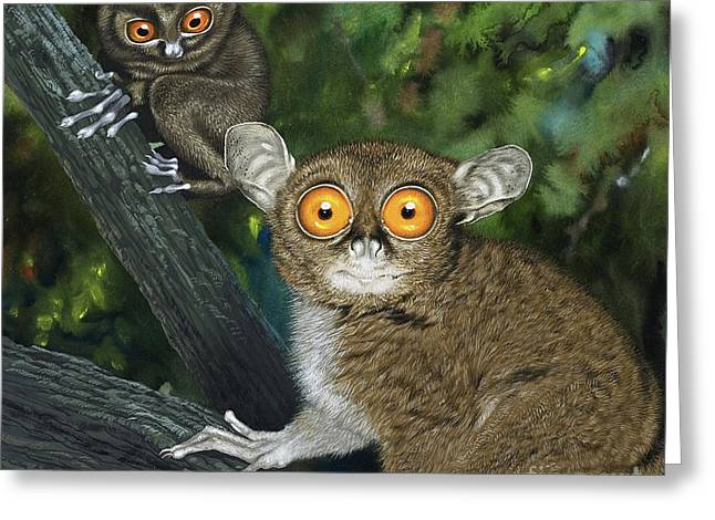Tarsiers Greeting Card