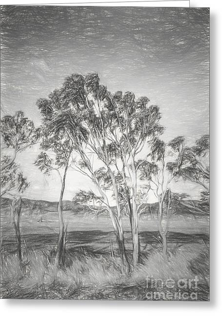 Tasmanian Countryside Illustration Greeting Card by Jorgo Photography - Wall Art Gallery