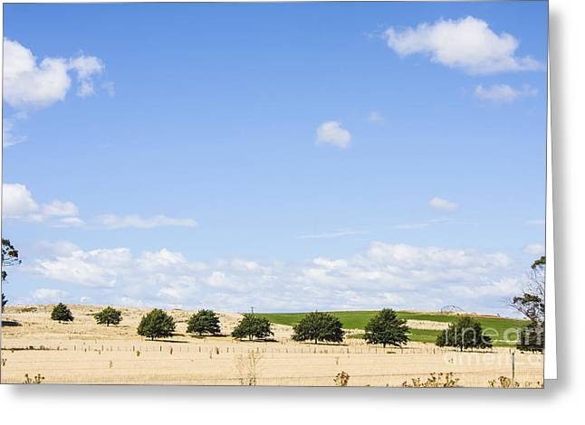Tasmanian Countryside Landscape With Sky Copyspace Greeting Card by Jorgo Photography - Wall Art Gallery