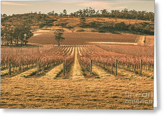 Tasmanian Winery In Winter Greeting Card by Jorgo Photography - Wall Art Gallery