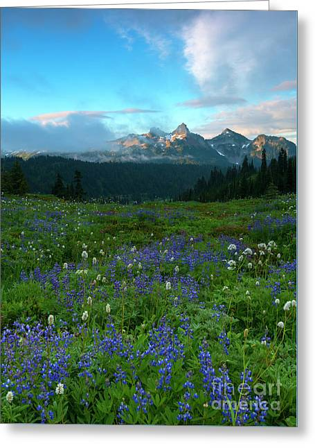 Tatoosh Cloud Explosion Greeting Card