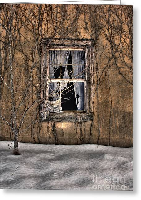 Tattered Curtain In Snow 2010 Greeting Card by Sari Sauls