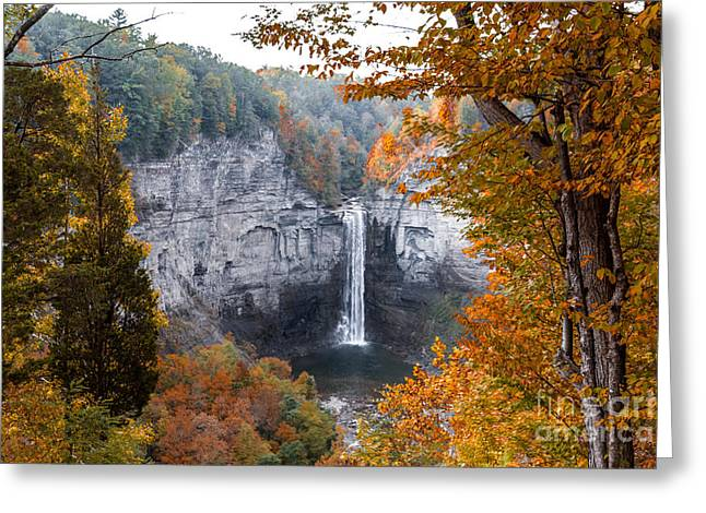 Taughannock Autumn Greeting Card