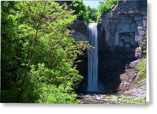 Guy Whiteley Greeting Cards - Taughannock Falls 0466 Greeting Card by Guy Whiteley