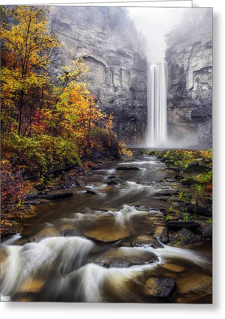 Greeting Card featuring the photograph Taughannock Fog by Mark Papke