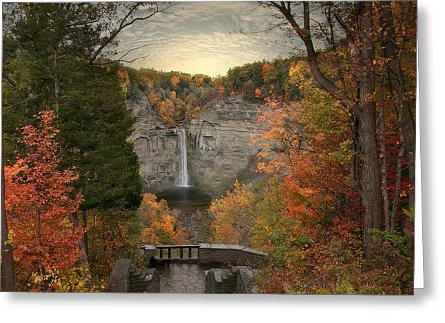 Taughannock Foliage Greeting Card by Jessica Jenney