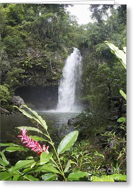 Taveuni, Tavoro Waterfall Greeting Card
