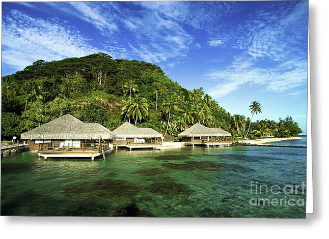 Te Tiare Resort Greeting Card by David Cornwell/First Light Pictures, Inc - Printscapes