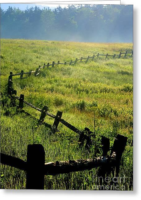 Tea Creek Meadow Greeting Card by Thomas R Fletcher