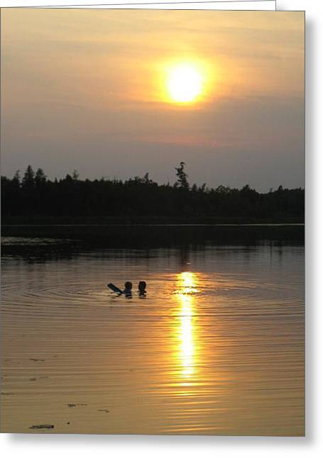 Teach Me    Lake Swimming   Wisconsin Greeting Card by Laura Pineda