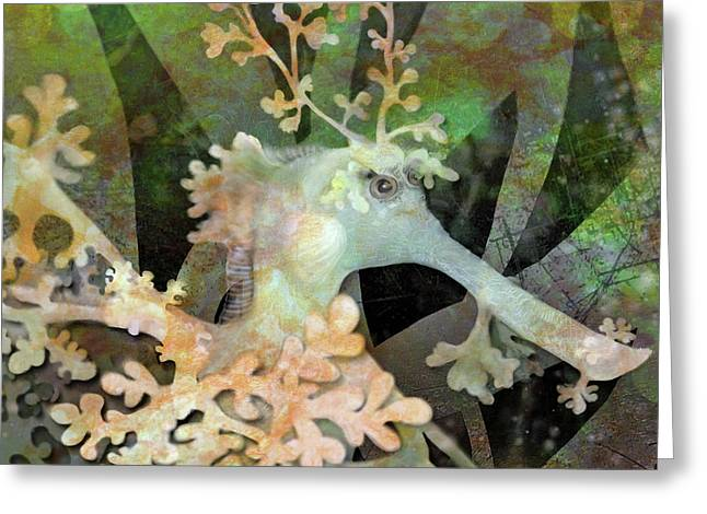 Teal Leafy Sea Dragon Greeting Card