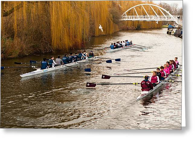 Teams Of Rowers On River Cam Greeting Card by Andrew  Michael