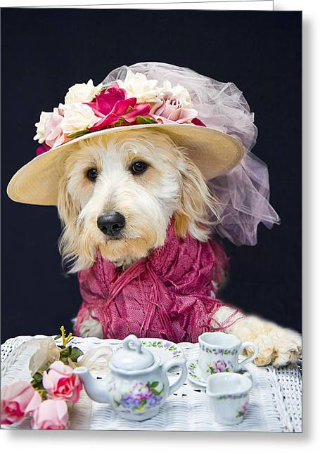 Teatime With Kati Greeting Card