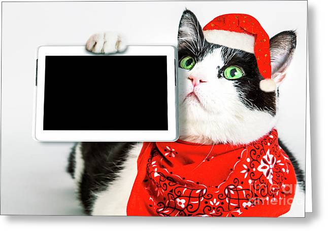Technology Christmas Cat Greeting Card