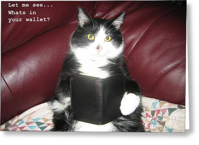 Teddy The Ninja Cat Wants To Know Whats In Your Wallet  Greeting Card by Reb Frost